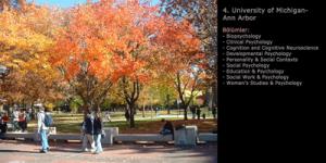 university-of-michigan-ann-arbor-psikoloji-programi