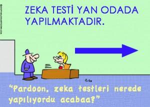Türkçe Zeka Testleri