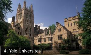 Yale Üniversitesi Siyaset Programı
