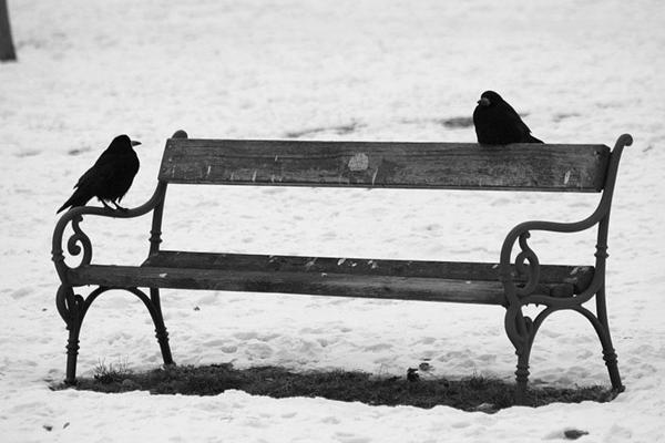 Aşk Hakkında Bilmeniz Gereken 20 Psikolojik Bulgu - 10