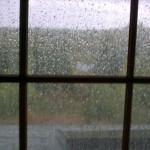 yagmur-pencerede-kitap