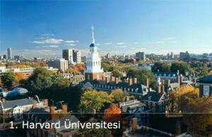 Harvard Üniversitesi Siyaset Programları