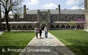 Princeton Üniversitesi Siyaset Programı