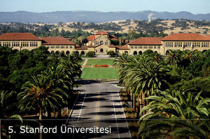 Stanford Üniversitesi Siyaset Programı