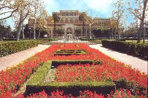 Dünyanın En Iyi Girişimcilik Okulları: USC