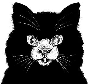 Optik İlüzyon - Hangi Hayvan?