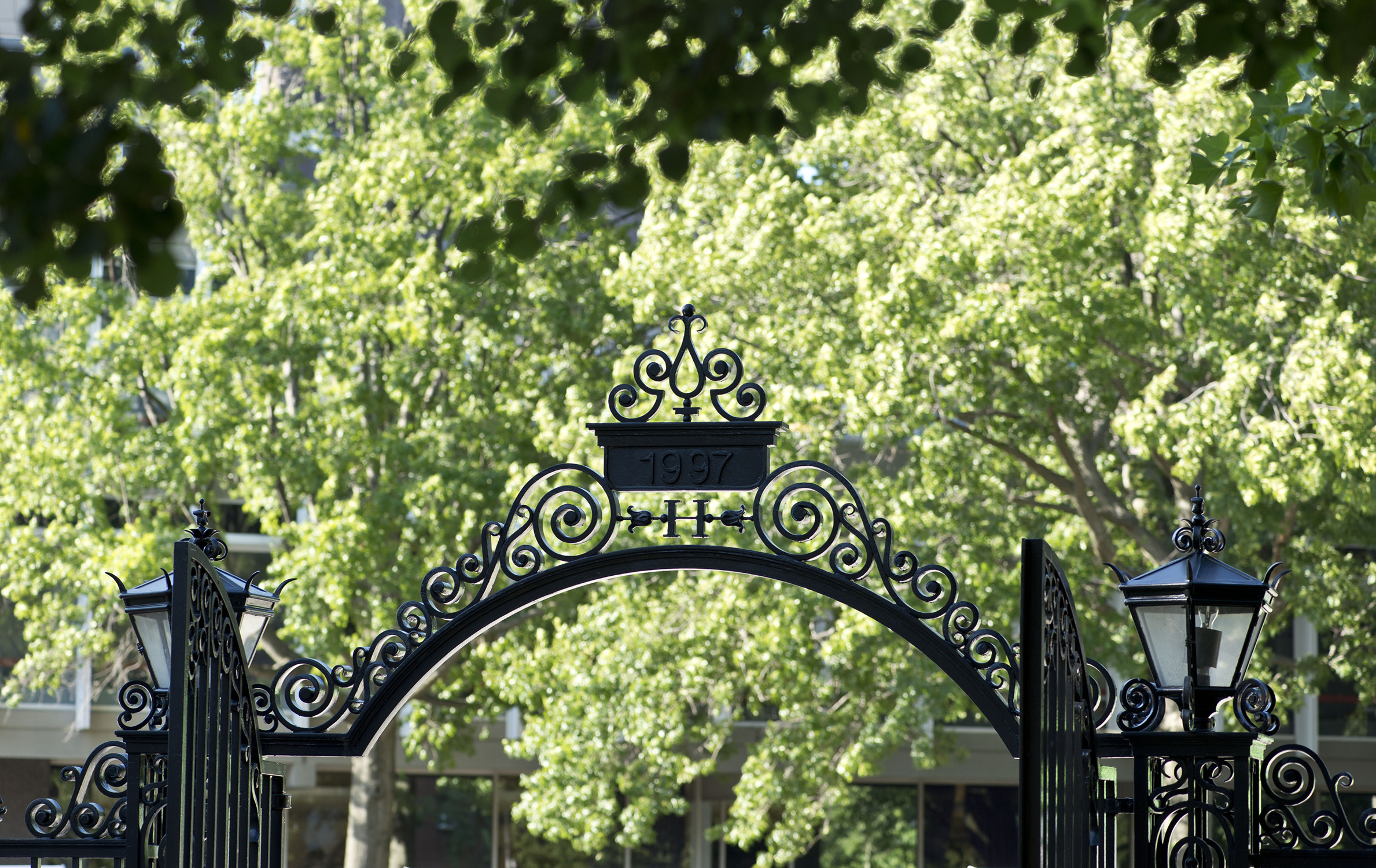 Harvard University Yaz Okulu - Amerika'da Yaz Okulu Programı